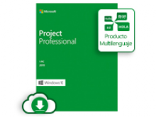 Microsoft Project Professional 2019 – Licencia – 1 PC